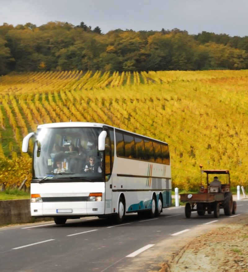 Guided Bus Tours - Permium Tours and Travel