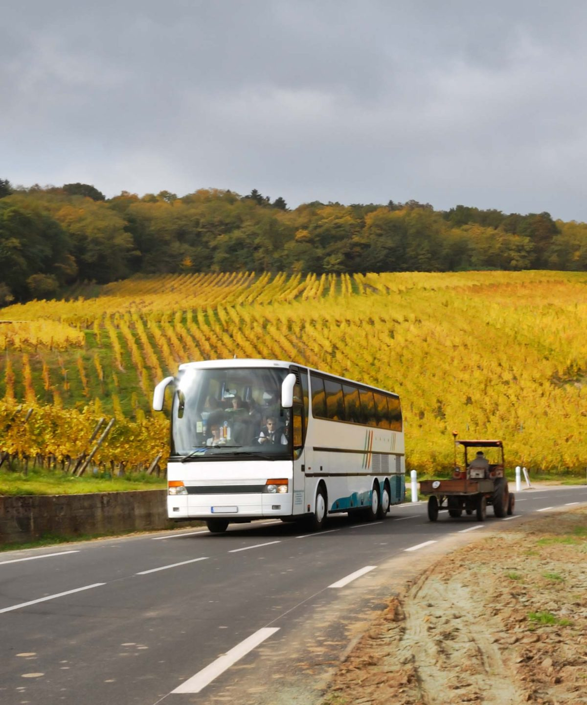 Guided Bus Tours - Permium Tours and Travel portrait